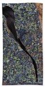 Lichen On Granite Beach Towel by Heiko Koehrer-Wagner
