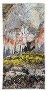 Lichen On Sea Beach Rock Beach Towel