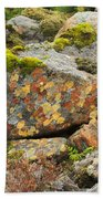 Lichens And Moss In Glen Strathfarrar Beach Towel