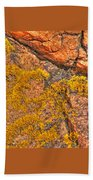 Lichens On The Shoreline Rocks 2 Beach Towel