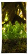 Licorice Fern Beach Towel