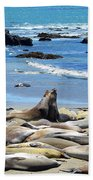 Life At The Rookery Beach Towel