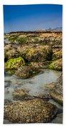 Life Clings As The Tides Ebb Beach Towel
