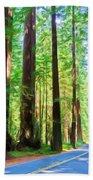 Light Through The Redwoods Beach Towel