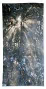 Light Throught The Trees Beach Towel