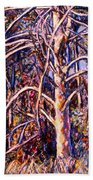 Lightening Struck Tree Beach Towel