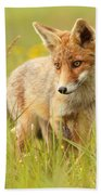 Lil' Hunter - Red Fox Cub Beach Towel