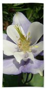 Lilac Columbine Beach Towel