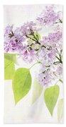 Lilac Beach Sheet