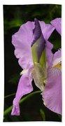 Lilac Siberian Iris Beach Towel