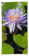 Lilac Water Lily Beach Towel