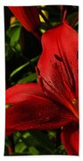 Lilies By The Water Beach Towel by Randy Hall