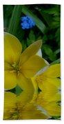 Lilium Of Gold Beach Towel