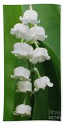 Lillies Of The Valley Cascade Beach Towel