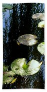 Lilly Pad Reflection Beach Towel