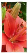 Lillys And Buds 1 Beach Towel