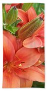 Lillys And Buds 3 Beach Towel