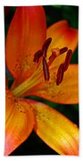 Lily Closeup Beach Towel
