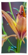 Lily From The Garden Beach Towel