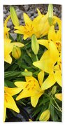 Lily Gathering Beach Towel