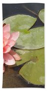 Lily Honey Beach Towel