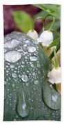 Lily Of The Valley After The Rain Beach Towel