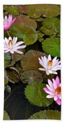 Lily Pad Haven Beach Towel