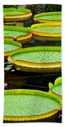 Lily Pad Pond Beach Towel