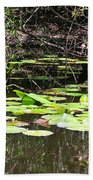 Lily Pads 1 Beach Towel