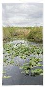 Lily Pads Floating On Water, Anhinga Beach Towel