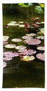 Lily Pads In The Fountain Beach Towel