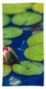 Lily Pads Beach Towel