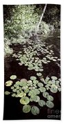 Lily Pads On Dark Water Beach Towel