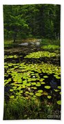 Lily Pads On Lake Beach Towel