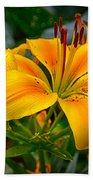 Lily Sunshine Beach Towel