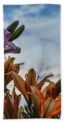 Lilys At La Fonda Beach Towel