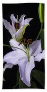 Lily's In Bloom Beach Towel