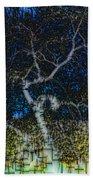 Limned Desert Tree Beach Towel