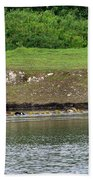 Line Dance Beach Towel by Sharon Talson