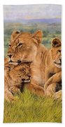 Lion Family Beach Towel