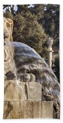 Lion Fountain In Rome Italy Beach Towel
