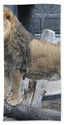 Lion King Beach Towel