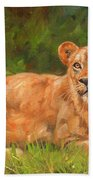 Lioness Beach Towel by David Stribbling