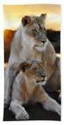 Lioness Protector Beach Towel