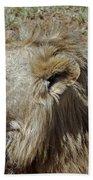 Lions Head Beach Towel