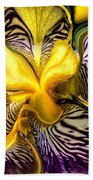 Liquified Orchid Beach Towel