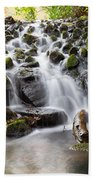 Little Cascade In Marlay Park Dublin Beach Towel