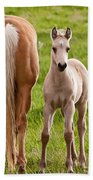 Little Foal Beach Towel