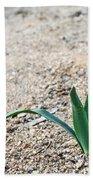 Little Plant Beach Towel
