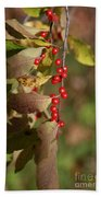 Little Red Berries Beach Towel